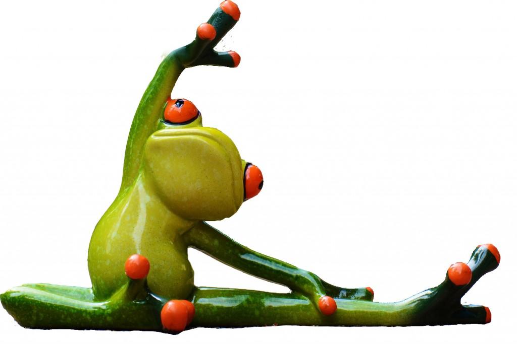 frosch Kopie